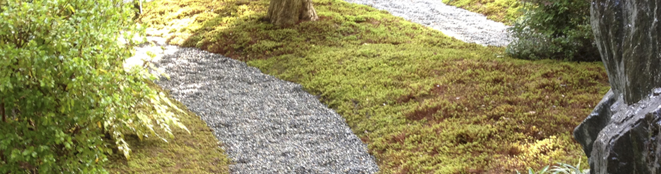 松井庭園ブログ